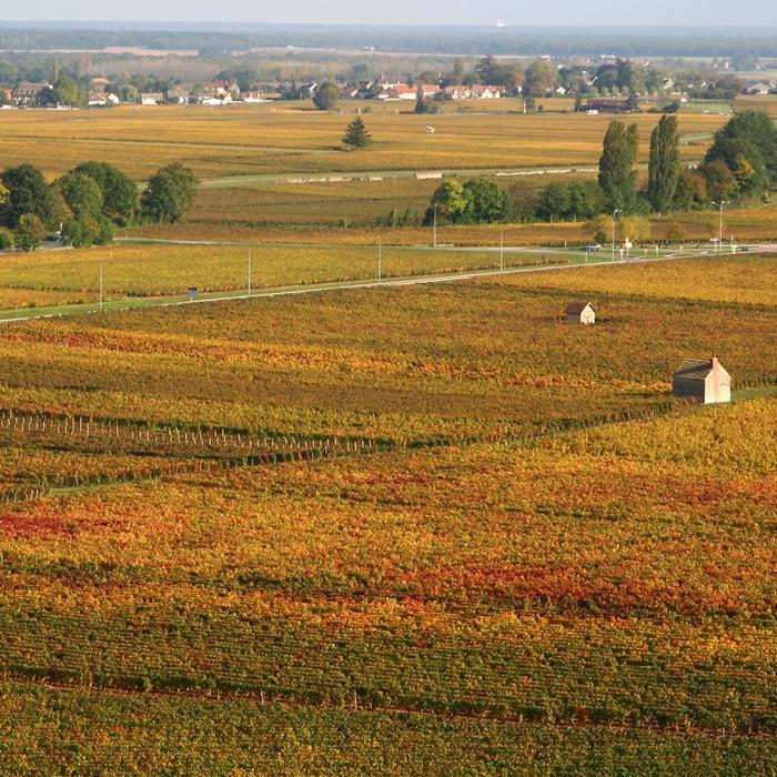 paisaje de Côte d'Or